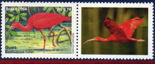 2921a - 2 Brazil 2004 - Maned,  Birds,  Fauna,  Personalized,  Sc 2921 photo