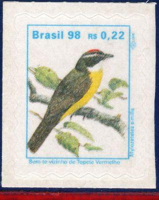 2498 Brazil 1998 - Bird