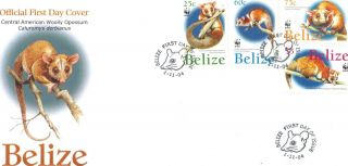 Belize - Fdc Wooly Opossum photo