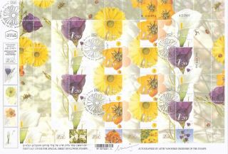 Israel Full Flower Sheet First Day Registered Cover 2001,  Signed By Designer photo