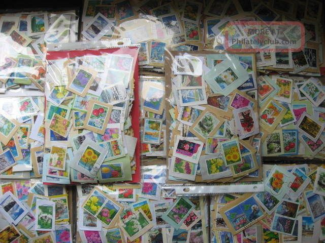 Japan Prefectures Hoard Of 5,  500 Commemoratives Asia photo