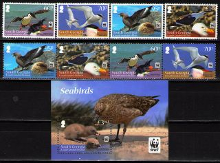 South Georgia 2012 Wwf Seabirds 4 V + 1 Strip Of 4 Different + 1 Ss photo