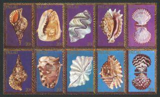 Palau 50a Block Shells photo