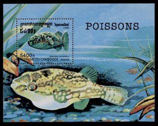 Cambodia 1909 - Fish photo