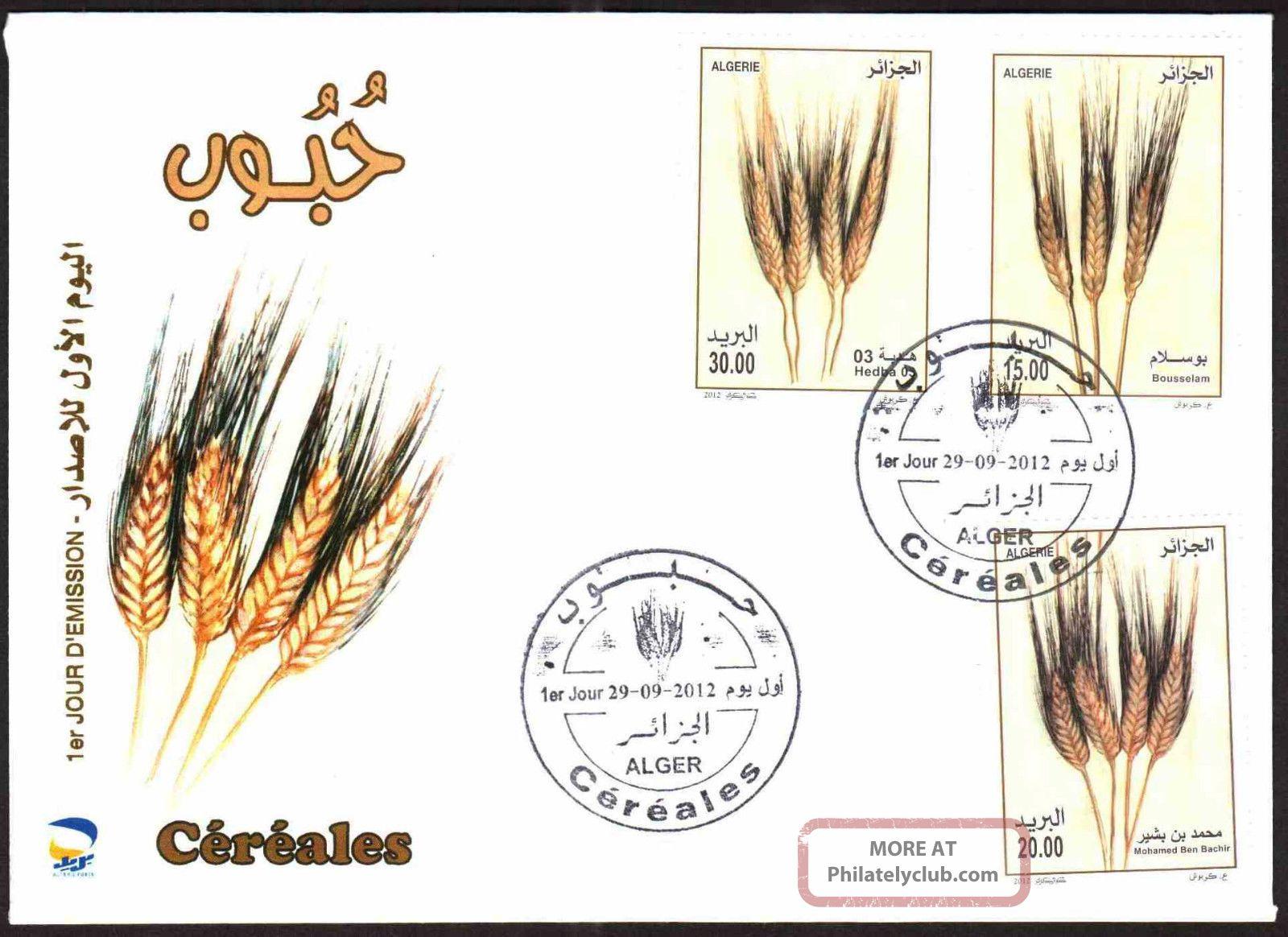 Algeria 2012 - Cereals