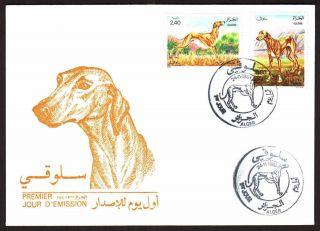 Algeria 1983 - Dogs