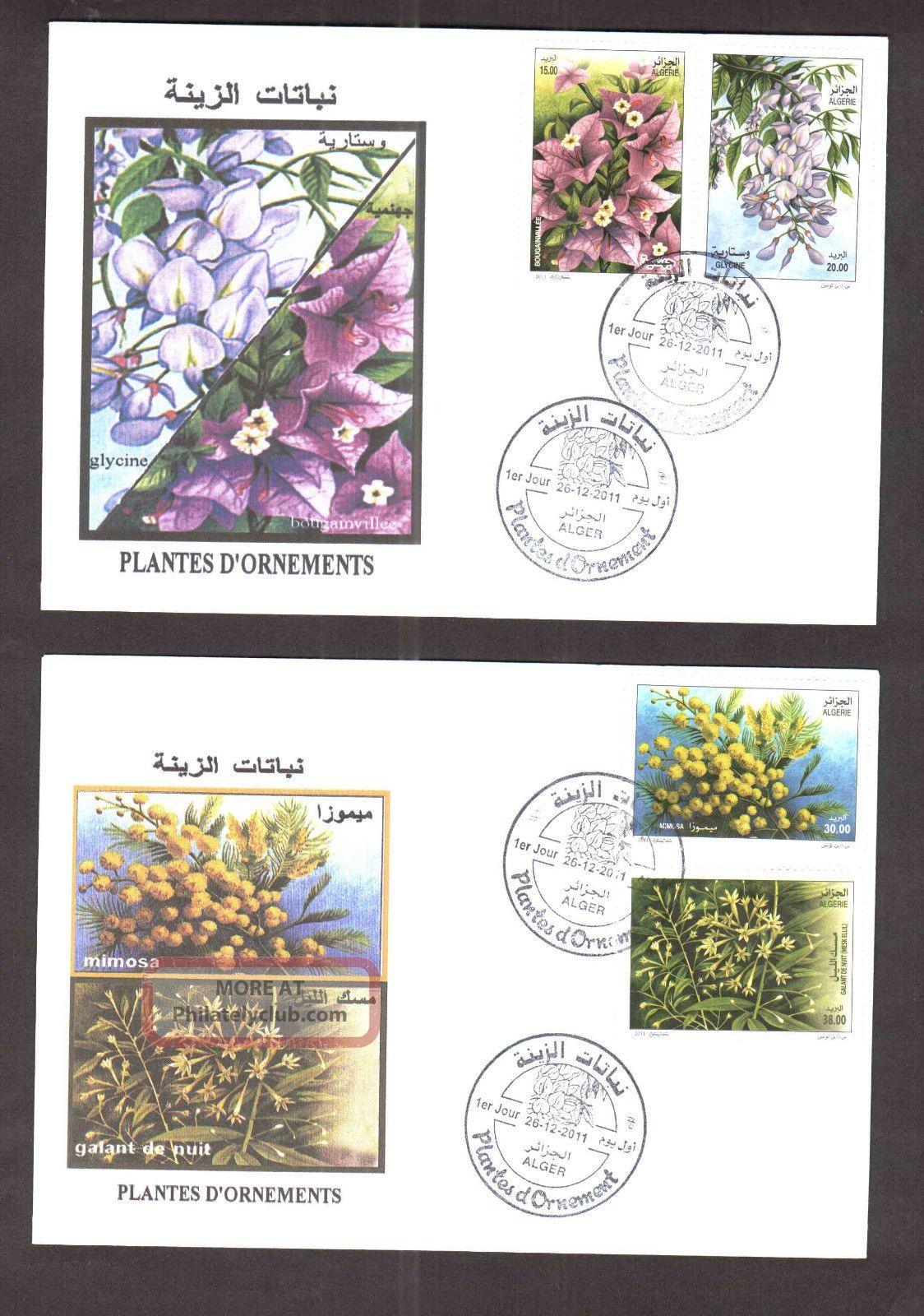 Algeria - 2011 - Ornement Plants - 4v,  Dec 267h,  2011 - 02 Fdc ' S,  Topical Cancel Topical Stamps photo