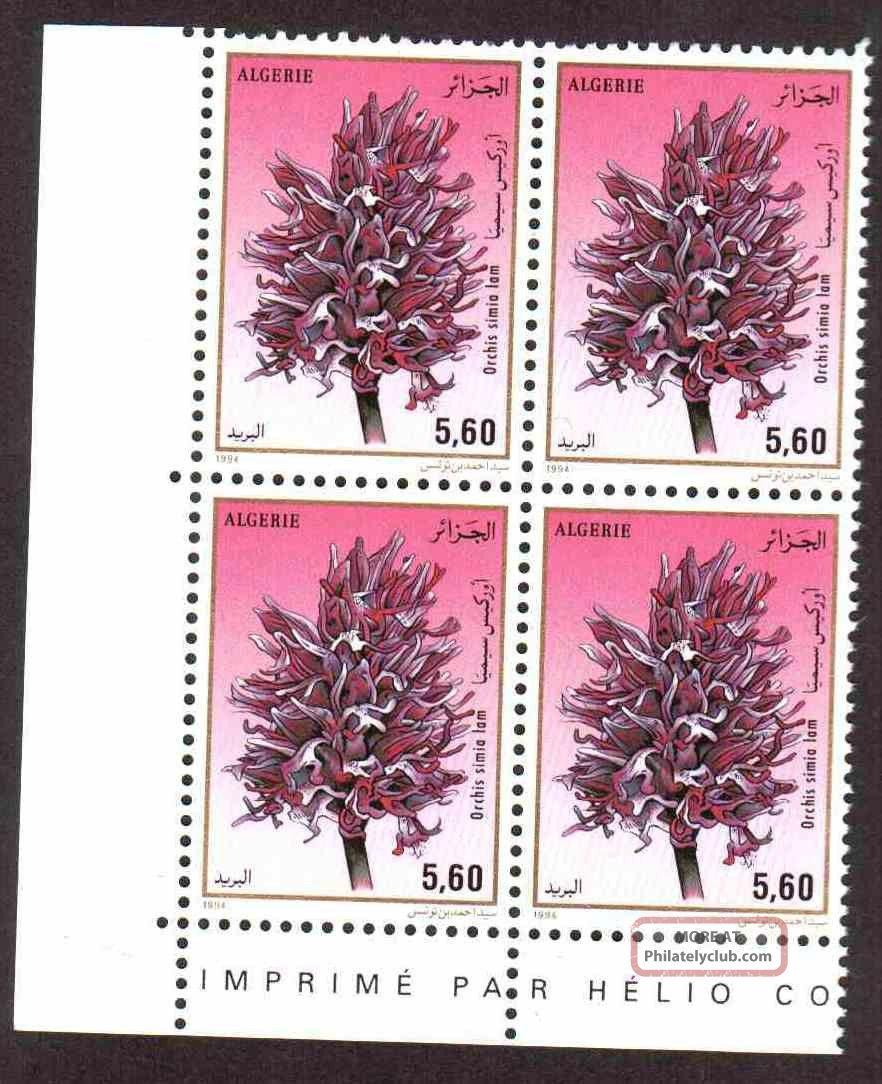 Algeria 1994 - Orchids - 1v (5.  60d),  Scott 997 - Corner Block Of 04 Topical Stamps photo