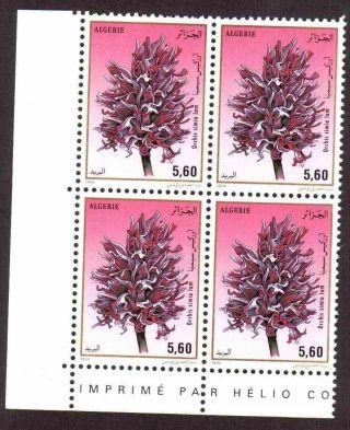 Algeria 1994 - Orchids - 1v (5.  60d),  Scott 997 - Corner Block Of 04 photo
