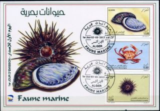 Algeria 2013 - Marine Fauna (3v) - Aug 03,  2013 - Fdc,  With Topical Cancel photo