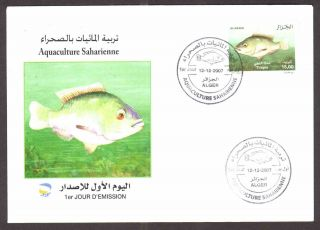 Algeria - 2007