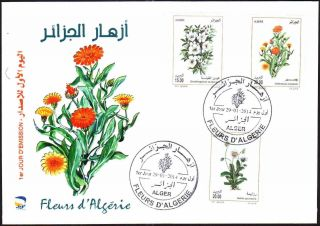 Algeria 2014 - Flowers (3v) - Jan 29th,  2014 - Fdc,  With Topical Cancel photo