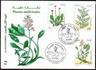 Algeria 2012 - Medicinal Plants (3v) Dec 11th,  2012 - Fdc,  With Topical Cancel photo