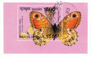Cambodia - 1993 - Butterfly Pararge Schakra S/s photo