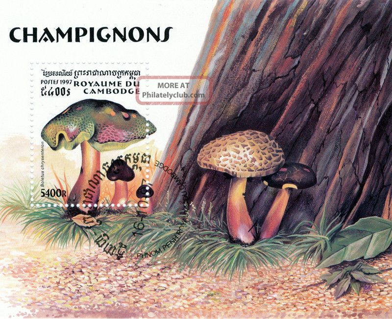 Cambodia - 1997 - Mushrooms S/s Topical Stamps photo