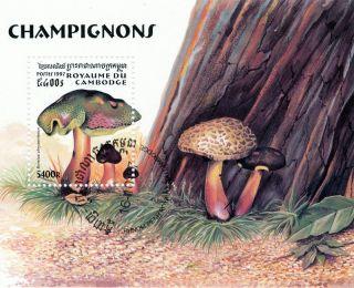 Cambodia - 1997 - Mushrooms S/s photo