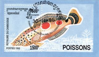 Cambodia - 1995 - Fish Coris Angulta S/s photo