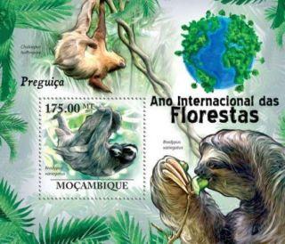 Mozambique - Sloth Animals - Stamp Souvenir Sheet 13a - 586 photo
