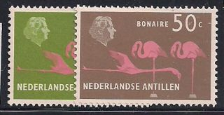 Antillen Neth.  - 1958 Birds Mlh - Vf 70+81 photo
