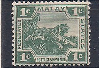 Malaya - 1906 Wild Animal Mlh - Vf 39ii photo