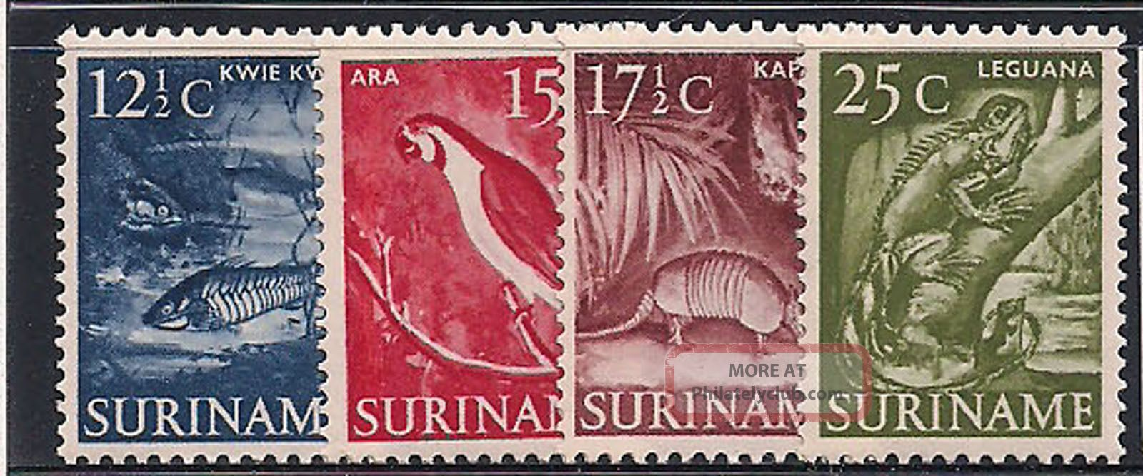 Suriname 1953 - 5 Wildlife Mlh - Vf 338 - 40+342 Animal Kingdom photo