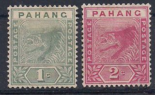 Pahang - 1891 Wild Animal Mlh - Vf 5 - 6 photo