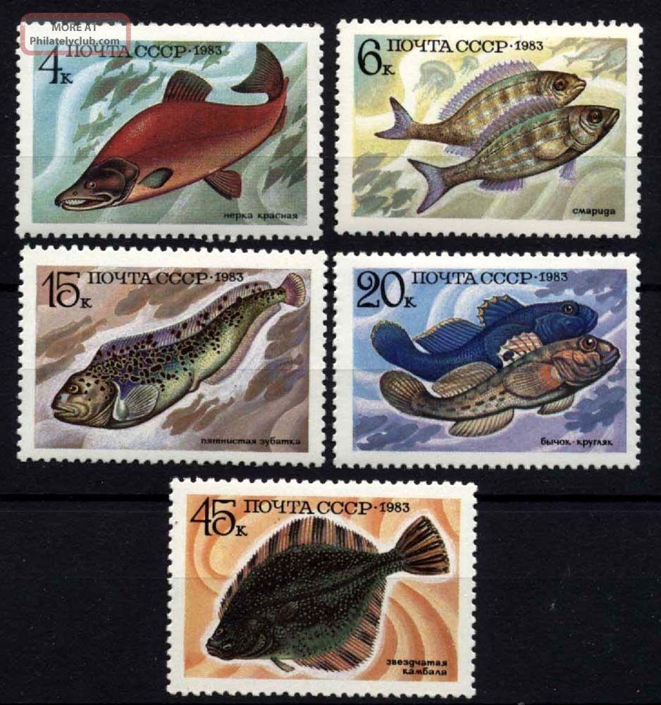 9549 Russia 1983 Fishes Animal Kingdom photo