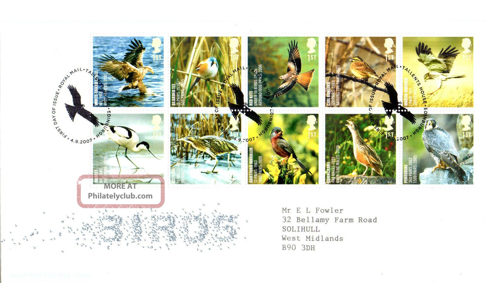 4 September 2007 Uk Species In Recovery Birds Rm First Day Cover Bureau Shs Animal Kingdom photo