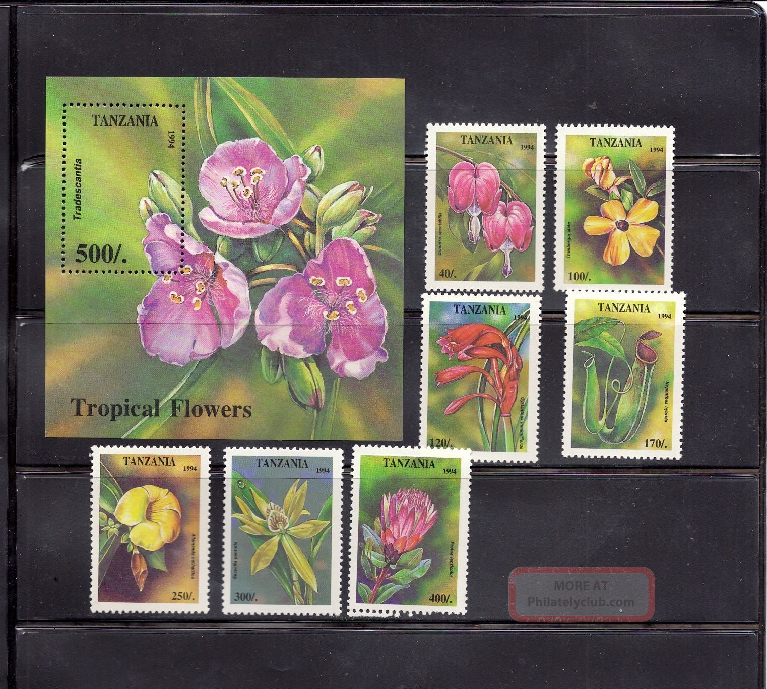 Tanzania 1995 Tropical Flowers Scott 1303 - 10 Topical Stamps photo