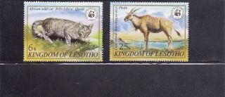 Lesotho 1982 Wildlife Scott 351,  353 Never Hinged photo
