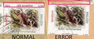 Stamp Error Bangladesh Major Perf Shifted Owl Birds Bengali Omitted Only Known photo