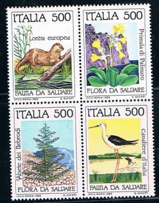Italy Sc1618 - 16191634 - 1637anatureconservationblock Of4/wildanimals/bird&faunamnh photo