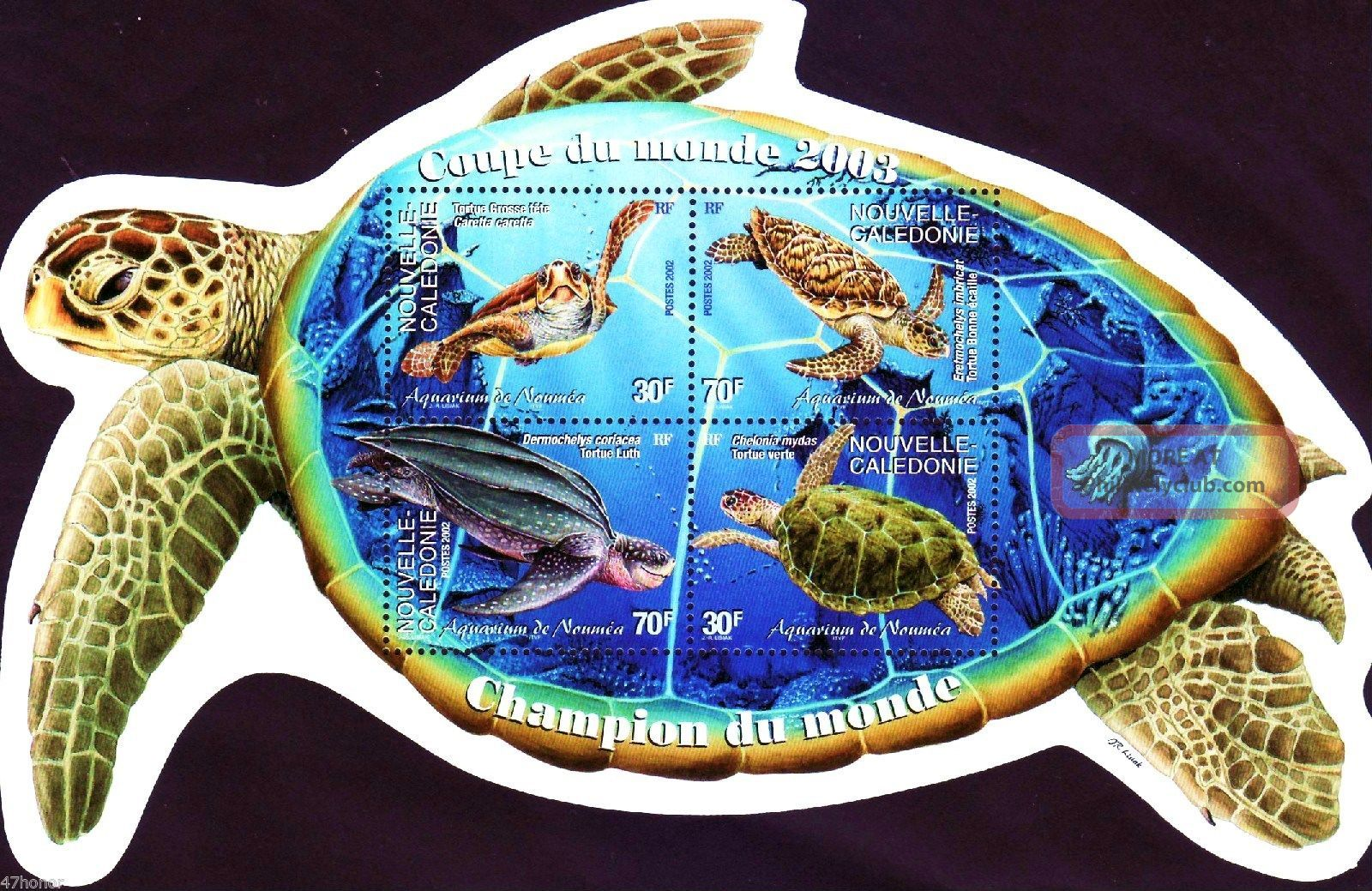 Nouvelle Caledonie 2002 Different Turtles M/s Animal Kingdom photo