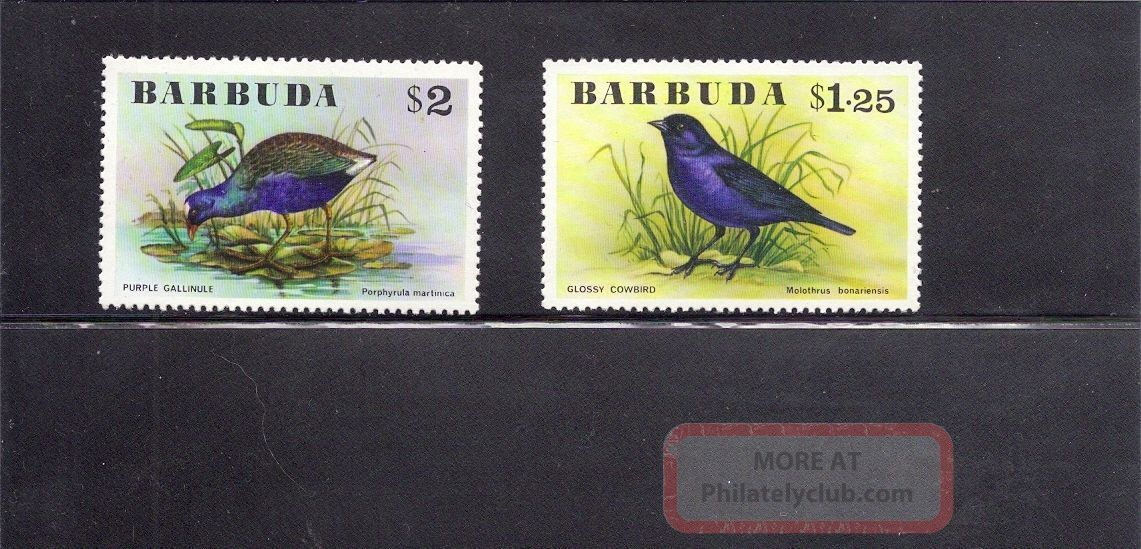 Barbuda 1976 Birds Scott 242 - 43 Animal Kingdom photo