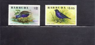 Barbuda 1976 Birds Scott 242 - 43 photo