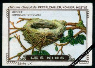 Vintage German Poster Stamp: Antique Cinderella,  Peter,  Cailler,  Kohler,  Nestle photo