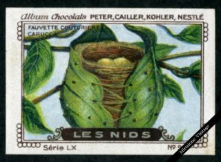 Vintage German Poster Stamp: Antique Lithograph Peter,  Cailler,  Kohler,  Nestle photo
