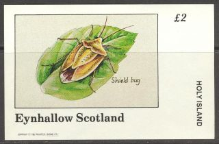 Eynhallow (br.  Local) 1982 Insects Shield Bug S/s 2£ Ne076 photo
