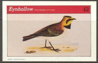 Eynhallow (br.  Local) 1982 Birds I S/s 2£ Ne105 photo