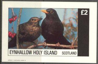 Eynhallow (br.  Local) 1982 Birds V S/s 2£ Ne109 photo