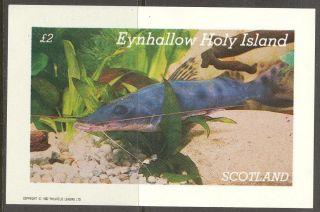 Eynhallow (br.  Local) 1982 Fishes Ii S/s 2£ Ne080 photo