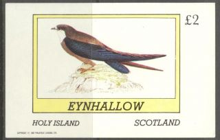 Eynhallow (br.  Local) 1982 Birds Iv S/s 2£ Ne108 photo