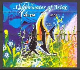 2011 Exotic Fishes Of Asia Sheet Of 2 Cb108 photo