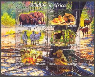 2011 Animals Of Africa Elephants Lions Zebras Okapi Sheet Of 6 Cb088 photo