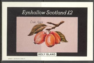 Eynhallow (br.  Local) 1982 Fruits Crab Apple S/s 2£ Ne115 photo