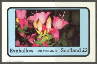 Eynhallow (br.  Local) 1982 Flowers Xi S/s 2£ Ne103 photo