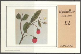 Eynhallow (br.  Local) 1982 Fruits Berries Ii S/s 2£ Ne117 photo