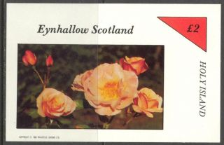 Eynhallow (br.  Local) 1982 Flowers Viii Roses S/s 2£ Ne100 photo