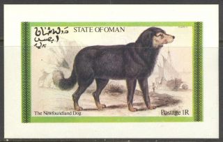 Oman The Newfoundland Dog S/s No019 photo