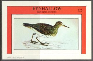 Eynhallow (br.  Local) 1982 Birds Vi S/s 2£ Ne110 photo